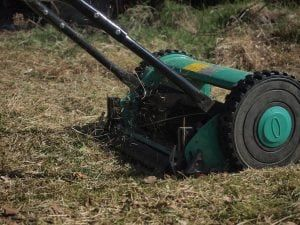 Do Reel Mowers Cut Better